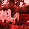 смертельная пандемия