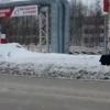 Агаев Анвар из Нижневартовска хозяин медведя