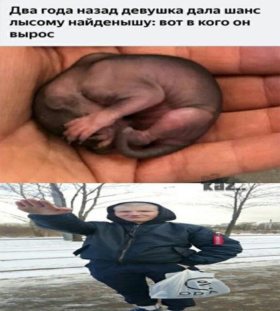 Наташа Данилова Сынуля Аболтус - мем