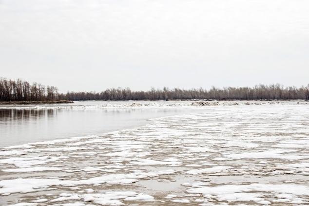 Обь пошла 2021 - видео трансляция Барнаул