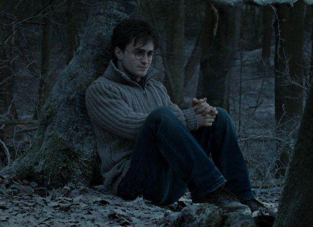 Почему Гарри Поттер не умер в лесу